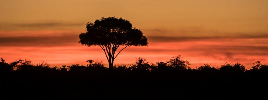 Day trips sunset image slider